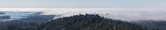 It 's Karl Again (tourtrophy) Tags: karlthefog fog mounttamalpais marincounty marin millvalley sutrotower sanfranciscobayarea sausalito