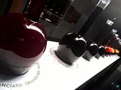 red wine (omnia_mutantur) Tags: vino wine vin expo expomilano expo2015 milano milan italia italy italie vinorosso redwine vinotinto vinrouge vinho vinhotinto vinitaly