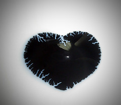 For Allie (Sea Moon) Tags: paint poster latex liquid dendrites branches mossy patterns texture rubber heart love wife