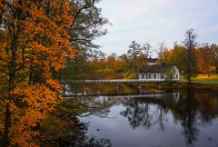 Riverside colours (Joni Mansikka) Tags: autumn nature outdoor river riverside trees leaves colours bridge buildings landscape reflections noormarkunjoki noormarkku suomi finland canonef2870mmf3545ii