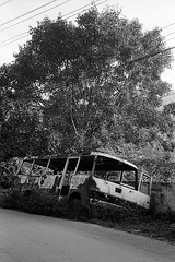 Broken bus (pacco_racco) Tags: bus road tree middlemekong northernlaos leicam6 leicasummicron35mmf20asph kodaktrix400