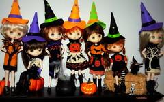 Happy Dolly Shelf Sunday! (TutuBella) Tags: jerryberry dolls witch witchhats jackolantern shannonslilcritters thedollycottage pumpkins notsospooky halloween dollyshelfsunday