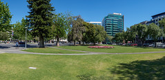 Hindmarsh Square (Anthony's Olympus Adventures) Tags: adelaide adelaidecbd cbd southaustralia sa australia city cityscape streetscape hindmarshsquare publicspace publicpark townsquare citycentre downtown panorama panoramic olympusem10 olympus olympusomd microfourthirds raw afternoon tree trees