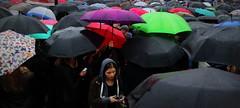 umbrellas (follow*light) Tags: black monday poland umbrellas people girl protest women