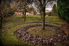 Because I'm an artist... (PentlandPirate of the North) Tags: tree leaves fall autumn art circles patterns garden iwishgardeninginvolvedlesswork unpredictable