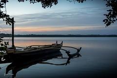22102016-PBP_5999 (Berns Patrick) Tags: pins landes lac azur foret soleil matin ponton pigne