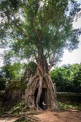 Ta Som (Gabriela Nakayoshi) Tags: tasom camboya asia cambodia d90 nikon temple tokinaatx116prodxii1116mmf28