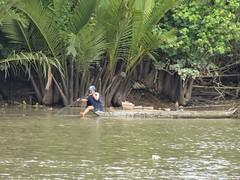 IMG_3340 (program monkey) Tags: vietnam mekong river delta cargo boat ben tre tra vinh palm tree paddle row oar work amazing