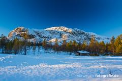 DSC03095 (norwegen-fotografie.de) Tags: norw norwegen norway norge femunden femundsmarka villmark hedmark see wildnis wald landschaft
