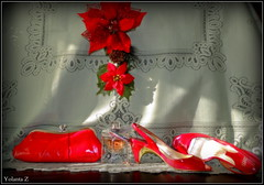 Let the Christmas parties begin (Yolanta Z) Tags: red shoes purse