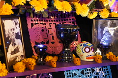 Ofrendas UNAM 2016 (RayMejia) Tags: unam ofrendas tamayo rufino mexicano tradicion tradition mexico city ciudad colores flor flores flowers colors yellow pink amarillo phoro photo photography foto fotografia