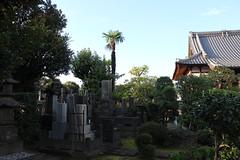 Daikokuten Kyooji