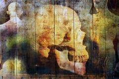 151116 (roberke) Tags: digitalart photoshop photomontage layers lagen textures textuur schedel tanden statue beeld tekst text skull doodshoofd creative creation surreal