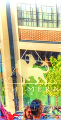 Chimera Coffee Shop (clarkcg photography) Tags: windows reflections coffeeshop chimera sidewalk light window windowwednesday