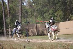 IMG_4800 (joyannmadd) Tags: horse rider joust spar duel warhorse hammoind louisiana armour outdoor game war combat midevil larenfest