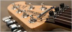 """Music Man"", Netherlands (CvK Photography) Tags: bokeh deatails detail autumn canon closeups color cvk enschede europe fall guitar netherlands overijssel twente music man musicman luke electric"