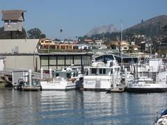 Harbor (rasputina2) Tags: morrobay endeavor dreamboat sanpedrospecial yacht boat