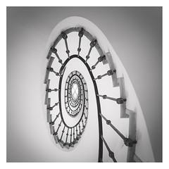 Oval (Vesa Pihanurmi) Tags: spiral staircase circular oval geometry italy venezia venice palazzocini monochrome blackandwhite window skylight balustrade abstract abstraction