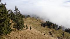 MTB-ROSSFELD-003609 (kritimani) Tags: rossfeld hohergoell salzachtal kehlsteinhaus untersberg dachstein