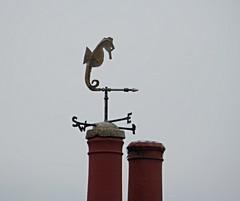 P9200035 (markbutler119) Tags: thenationaltrust newtown isleofwight
