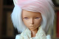 IMG_0884 (NewPotatoMash) Tags: fairyline momo bjd balljointed doll cute fairyland fl msd legitbjd
