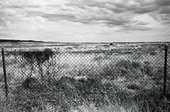 1791 (The Dent.) Tags: nikon f3 2485 kodakhawkeyesurveillancefilm tmaxdev 14 6 min 28mm port pirie