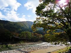 autum morning (oneroadlucky) Tags:  nature landscape river country mountain sunray tree autum fall japanese japan plant bridge sky