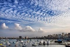Alexandria's Eastern Harbour (Nadia Rifaat) Tags: sky clouds outdoor alexandria eastern harbour boats fishing city line landscape mediterranean nikon d5300 18140mm egypt