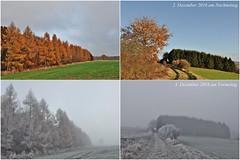Der Winter kam über Nacht (Uli He - Fotofee) Tags: ulrike ulrikehe uli ulihe ulrikehergert hergert nikon nikon90 fotofee