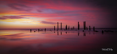 port_willunga_pink_reflections- (terencemay11) Tags: beach sunset nikon d750 pink pinkclouds pinksunset beautiful light relections reflection portwillunga southaustralia australia relax poles jetty old