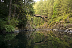 Completing the Circle (gwendolyn.allsop) Tags: morning bridge trees reflection water pool forest river landscape outdoors mirror washington still peaceful hike explore serene curve tranquil d5200