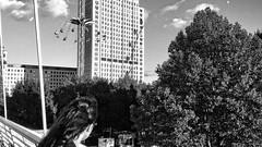Crossing Hungerford Bridge and looking at the Shell Centre (Martin Carey) Tags: uk greatbritain bridge windows shadow england sky blackandwhite moon tree london monochrome westminster clouds hair unitedkingdom longhair samsung londoneye gb mm funfair 42 hungerfordbridge shellcentre gbr 1896 iso50 22 flashoffdidnotfire samsungphotography samsunggt19505 martincarey august232015