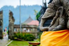 Offering to Ganesha - Bali, Indonesia (Hendraxu) Tags: travel bali elephant macro indonesia ganesha fuji god faith religion believe offering fujifilm 60mm hindu hinduism gajah fujinon deva balinese f24 dewa xm1