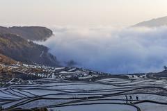 Rice terraces in Duoyishu (wietsej) Tags: yuanyang yunnan china rice terraces duoyishu sonyalphadslr sony zeiss nex 7 nex7 1670 sel1670z a6000 6000 wietsejongsma