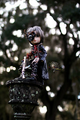 Seeing The Way (dreamdust2022) Tags: man cute smart doll fighter young kind knight strong brave cyrus rogue charming sir magical tender noble adventurer hansom taeyang