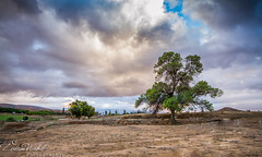 Stormy autumn (zedamnabil) Tags: autumn sky season landscape shower algeria cloudy wideangle rainy algerie paysage sigma1020 batna canon7d zedamnabil