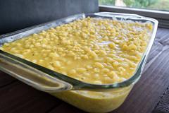 ready for the oven (Husbands That Cook) Tags: vegan lemon tofu casserole pasta vegetarian garlic mustard turmeric thyme macandcheese nutritionalyeast veganomicon veganmacandcheese
