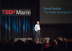 TEDxMarin 2015 San Rafael  Glen Graves photographer138 David Sedlak