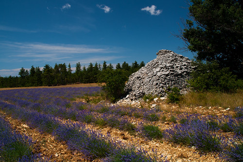 Provence_09_689