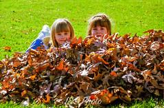 Enjoy the Leaves (jns_photo) Tags: leaves backyard year 1999 va scanned herndon setting source 1990s 35mmneg jsphoto peoplejs 35mm1200dpi