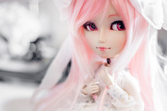 Princesita! (mymuffin_15) Tags: pink sweet dal william carving wig pullip yaoi custom damian mian isul obitsu taeynang