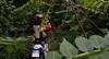 Welcome to the jungle! (Enrico.mate - Foto/Grafico) Tags: trees red green nature grass forest dark nikon cross mud ground natura motorbike moto driver terra rosso mata enduro bosco foresta 18105 motociclista rossa fango oscurità d3200 18105vr nikonclubit