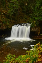 Upper Butte Creek Falls (Terra Nova Images) Tags: county longexposure oregon forest state marion waterfalls molalla santiam blurredwater scottsmills upperbuttecreekfalls crookedfingerroad