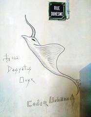 Animal by Codex Urbanus [Paris 18e] (biphop) Tags: streetart paris france animal graffiti europe montmartre graff codex urbanus duhesme codexurbanus