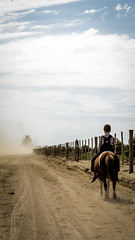 Me and my horse (Fran Caparros) Tags: life boy horse argentina argentine dutch rural caballo la kid catholic child camino german vida campo colonia nio pampa infante joven mennonite agricultura menonita guatrache