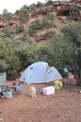 March Spring Break 2014 (Utah Desert) 302