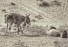 #blackandwhite  #bw #petsandanimals #photography #nature #hdr  #freetoedit #food  #animal #animals #Sheep #donkey #donkeys #Follow #followme # # # # # #Sonyalpha #sony #alpha # #  # # # # (photography AbdullahAlSaeed) Tags: blackandwhite bw food nature animal animals photography sheep donkeys sony donkey follow alpha hdr followme     petsandanimals    sonyalpha     freetoedit