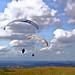 Tandem Gliding - original