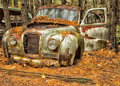 McLean's XXXXV (martinaschneider) Tags: old fallleaves ontario fall abandoned car rust rockwood wreckers mcleans