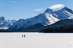 Enjoy the Journey (Quincey Deters) Tags: winter people mountain lake snow canada forest landscape snowshoe person day walk sunny bluesky clear alberta northamerica jaspernationalpark malignelake snowcovered 2015 canadianrockymountains